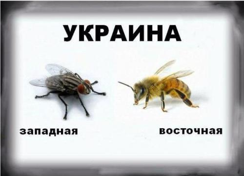 ukraina-zapadnaja-i-vostochnaja
